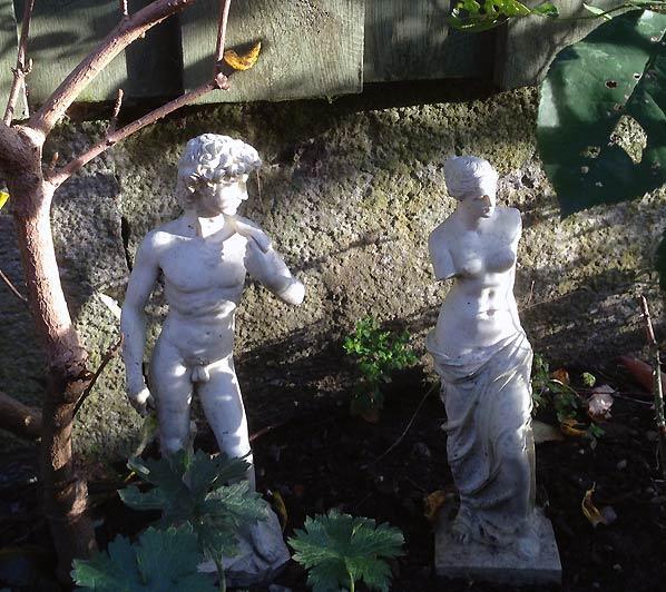 Stemninger fra den lille have i november
