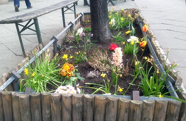 Urban gardening i Berlin og nye have-gadgets til den lille have